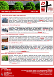 CCS_Weekly_China_Briefing_21 March_Xin