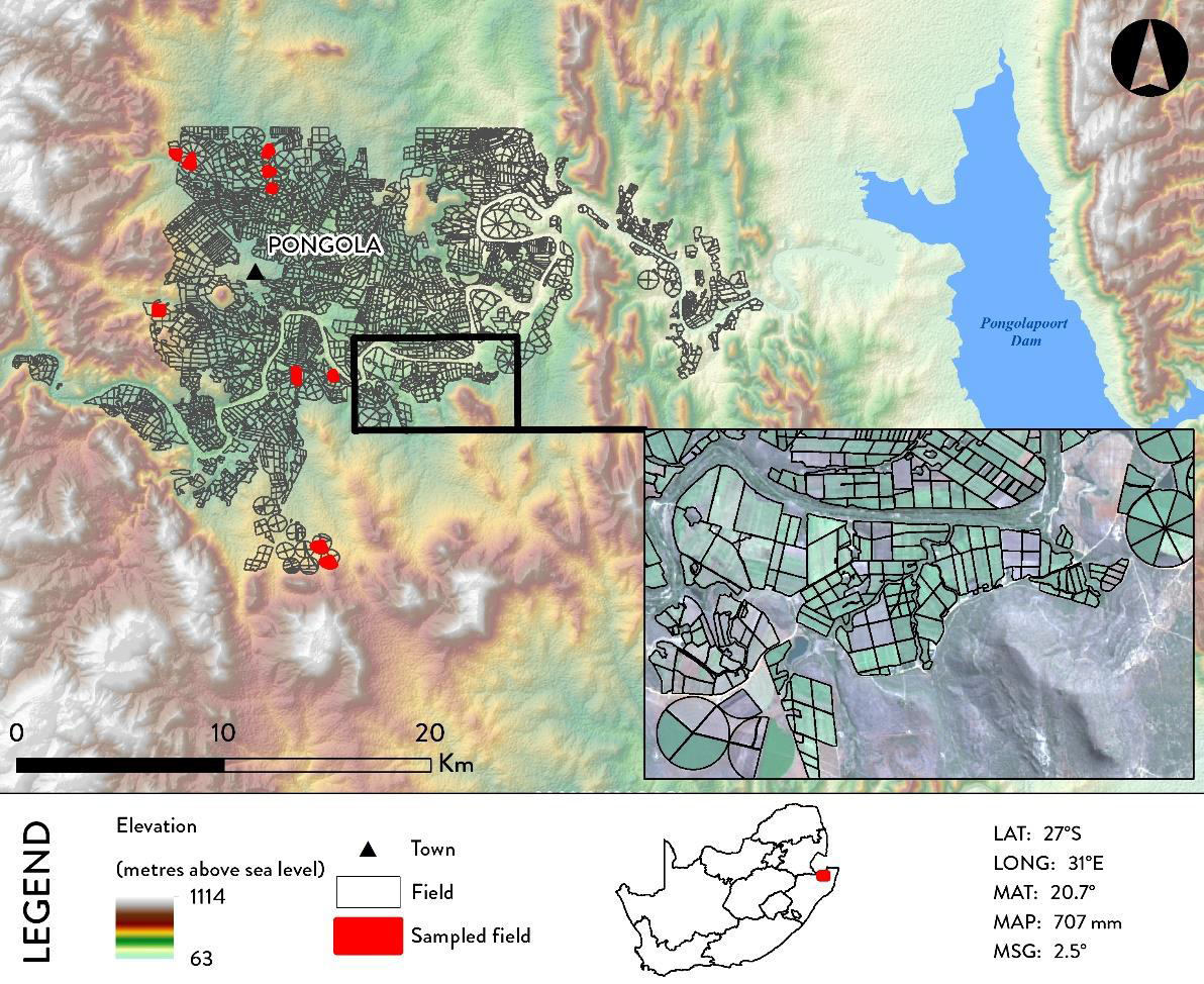 Pongola study area with an example of its larger, geometrical field structures