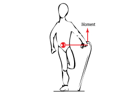 Relevant Biomechanics And Physics For The Student Of The